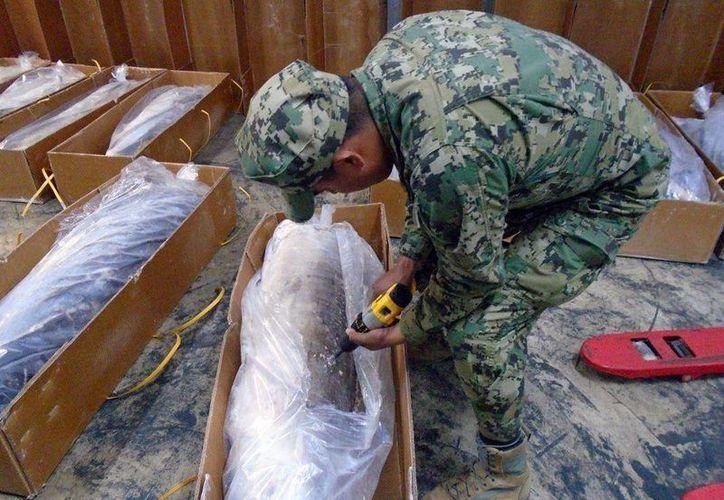 El viernes la Marina informó del hallazgo de un cargamento de pescado congelado, presuntamente contaminado con una sustancia que en pruebas de laboratorio resultó positivo a la cocaína. (twitter.com/CarlosTejedaA)