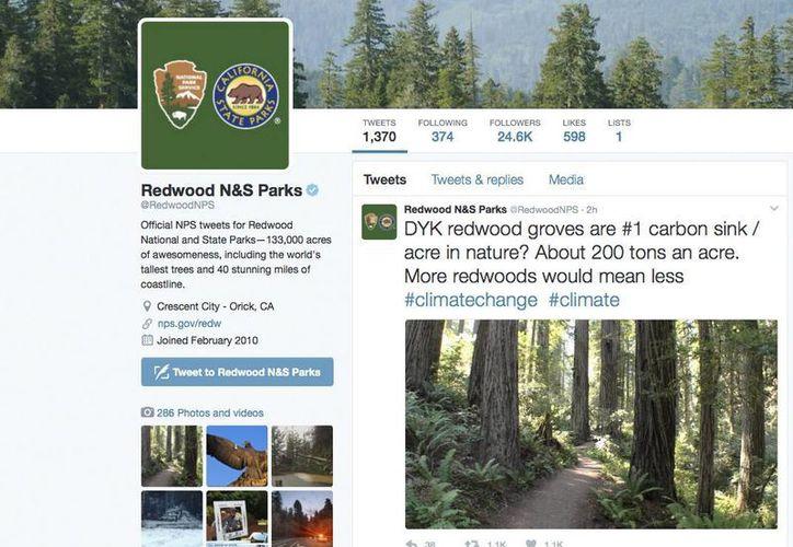 Expertos legales dijeron que el Departamento de Justicia podría presentar cargos por los tuits de cuentas de agencias federales enviados por usuarios no autorizados. Imagen muestra el Twitter oficial del parque nacional Redwoods de EU. (Servicio de Parques Nacionales de Estados Unidos vía AP)