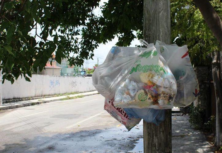 Los camiones recolectores de basura en Playa del Carmen recorrerán la misma ruta tres veces a la semana. (Adrián Barreto/SIPSE)