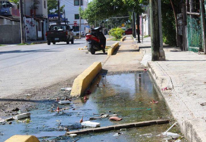 La infraestructura recorre de norte a sur las avenidas 15 y 20 de esa colonia. (Octavio Martínez/ SIPSE)