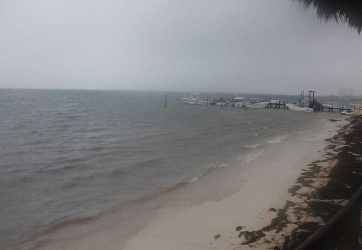 prestadores de servicios náuticos optaron por dejar sus embarcaciones en el muelle. (Renán Moguel /SIPSE)