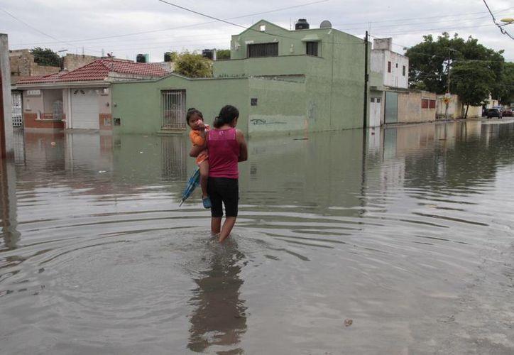 Las precipitaciones pluviales de ayer dejaron encharcamientos en varios puntos de la ciudad. (Tomás Álvarez/SIPSE)