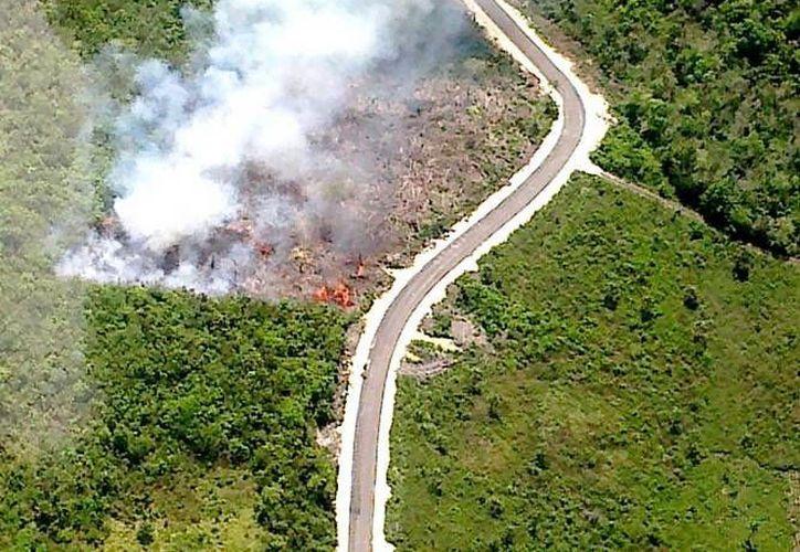 En la zona norte se cuenta con 110 combatientes comunitarios, para atender casos de conflagraciones en esta temporada de incendio. (Redacción/SIPSE)