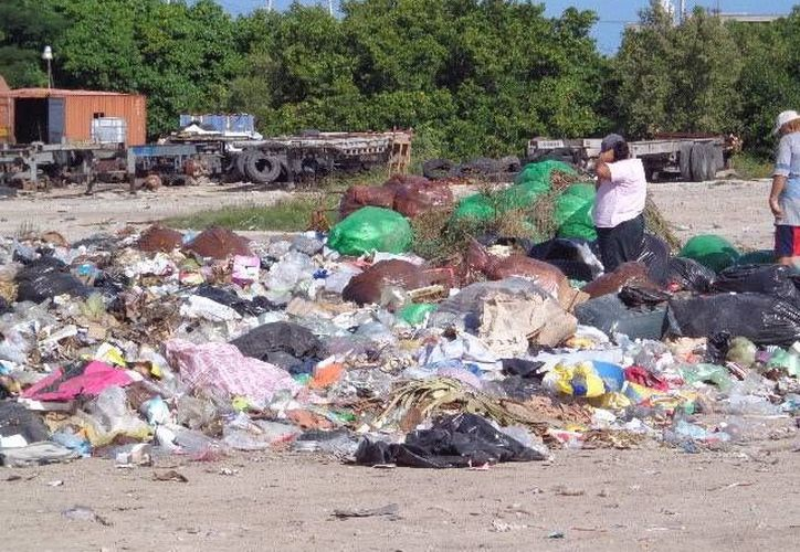 Hoy hay 10 empresas interesadas en obtener concesiones en el servicio de recolección de basura y alumbrado público para el puerto de Progreso. En el caso de la basura, el Alcalde dijo que es urgente concesionarla porque no hay recursos para construir un relleno sanitario. (Milenio Novedades)