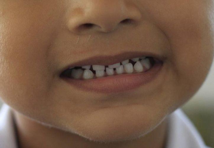 El aseo de la dentadura debe empezar desde los tres años, bajo recomendación del médico. (Harold Alcocer/SIPSE)