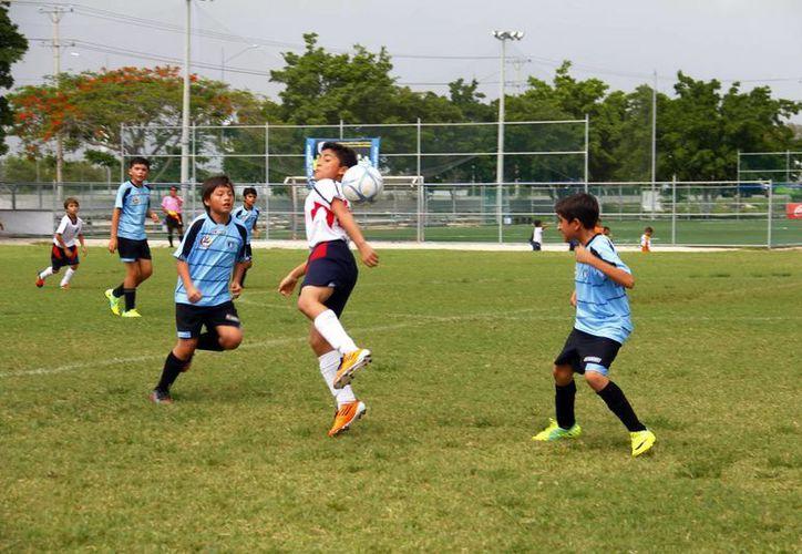 En la Champions participán los mejores clubes de cada liga de Mérida. (Milenio Novedades)