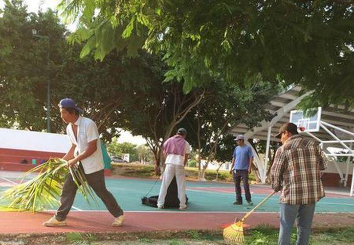 El objetivo es que los solidarenses puedan transitar con tranquilidad, por las calles. (Redacción/SIPSE)
