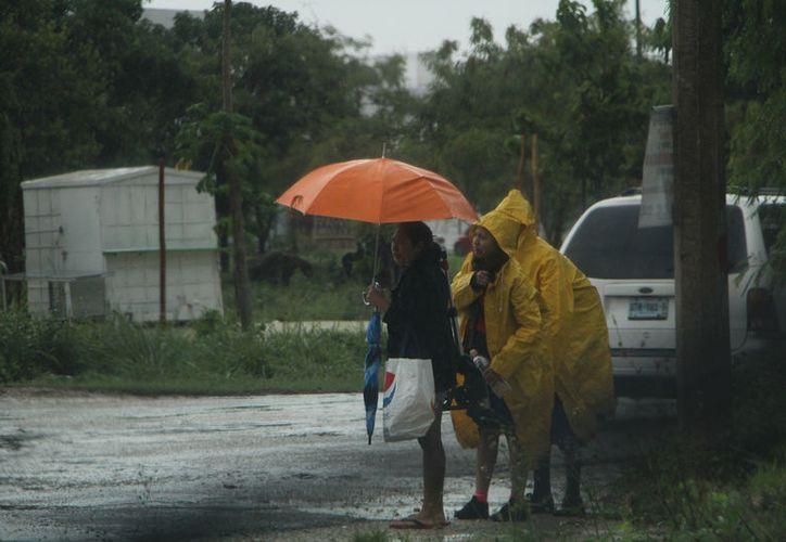 Se analizará la lluvia que cae en el estado durante un período de tres años. (Foto: Paola Chiomante/SIPSE)