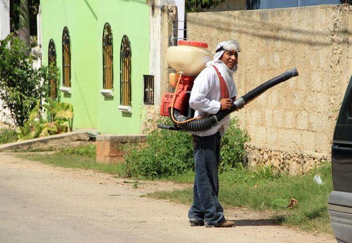 Actualmente existe una campaña en contra del dengue en todo el Estado. (Milenio Novedades)