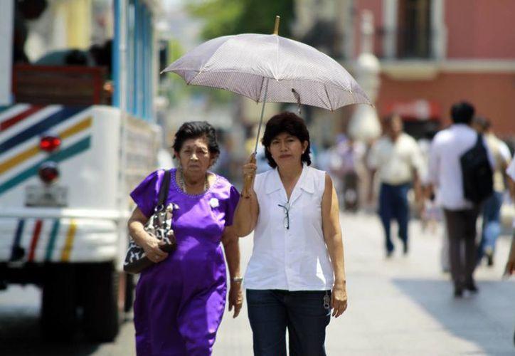 Ya son varios días en Mérida con temperaturas superiores a 40 grados. (Christian Ayala/SIPSE)