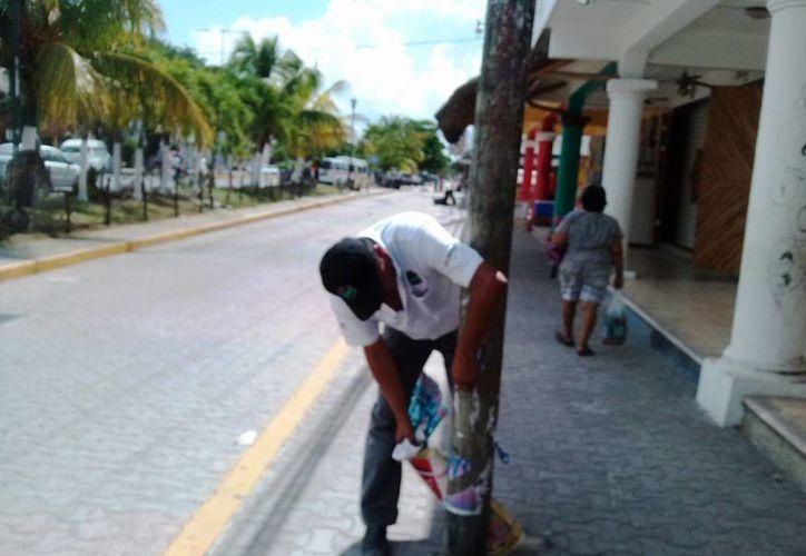 Trabajadores del ayuntamiento retiraron más de media tonelada de anuncios y pancartas del primer cuadro de la ciudad.  (Rossy López/SIPSE)