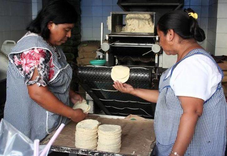 La Secretaría de Economía explicó que un un kilo de tortilla, en el que el efecto del incremento en el precio del diésel debe ser más de cinco centavos por kilo. (Archivo/SIPSE)