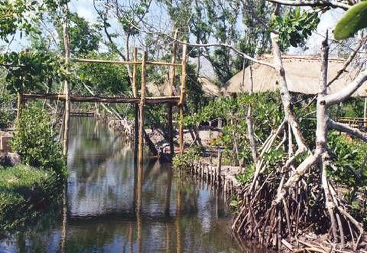 En lo que va del año 'El Corchito' ha recibido cerca de 60 mil visitantes. (yucatan.gob)