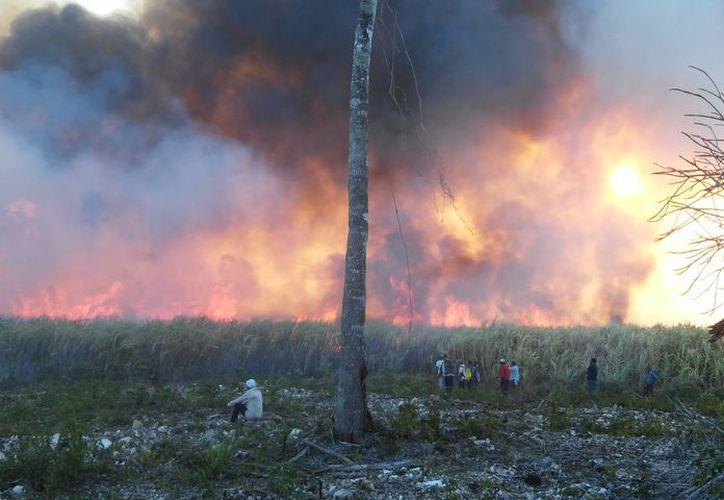 El ingenio San Rafael de Pucté no cuenta con la infraestructura ni pipas para sofocar un incendio o explosión. (Carlos Castillo/SIPSE)