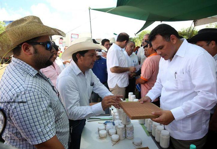 Rolando Zapata durante la entrega  de insumos para control de plagas y enfermedades a productores de chile habanero. (Milenio Novedades)