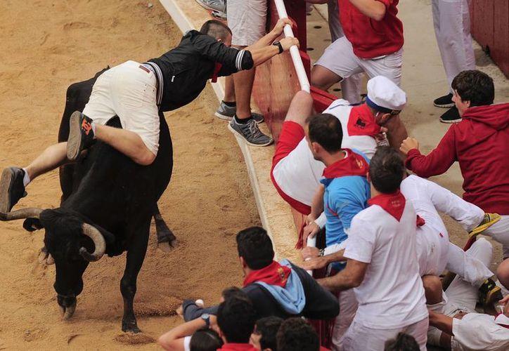 En parte el retraso del último encierro se debió a que un toro que había resbalado, tardó en reincorporarse y además arremetió contra un corredor varias veces. (Foto: AP)