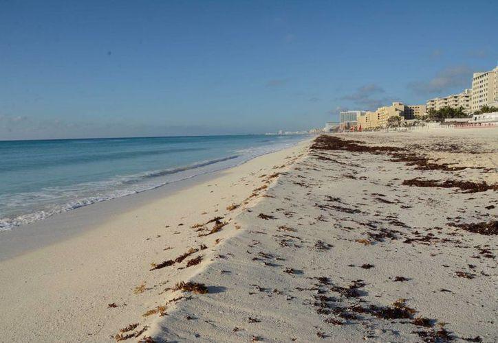 Noviembre es el mes en que la línea costera se reduce más. (Luis Soto/SIPSE)
