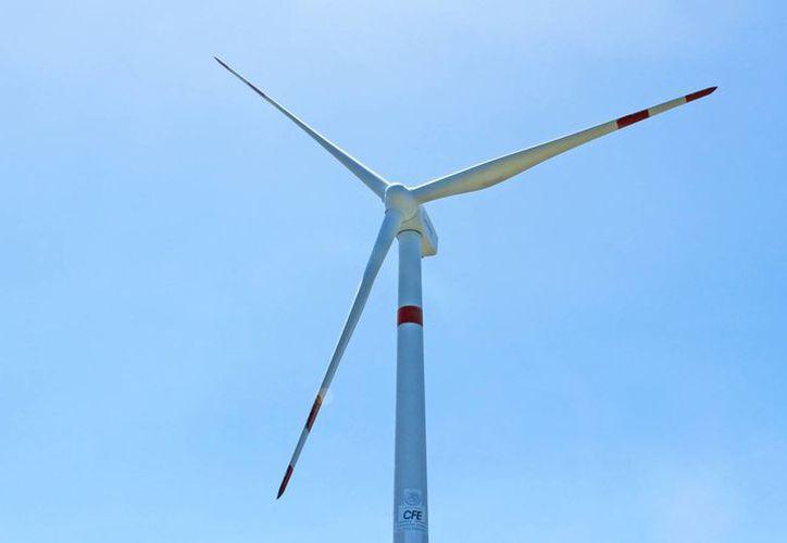 Utilizar energía renovable no genera gases de efecto invernadero. (Jesús Tijerina/SIPSE)