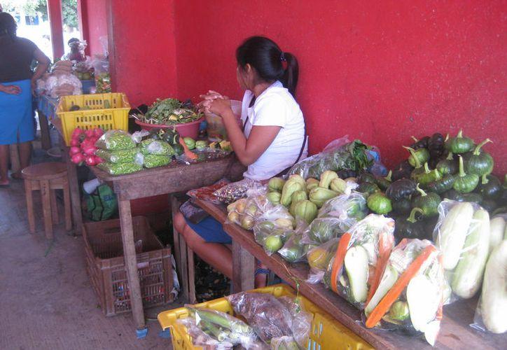 Lo único que estas mujeres quieren, son programas para poder ganarse el sustento diario. (Javier Ortiz/SIPSE).