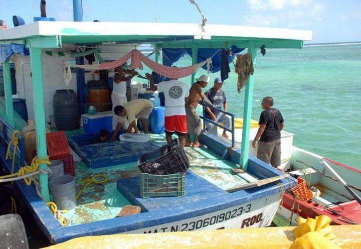 Los pescadores, entre ellos los que capturan pepino de mar, no salieron a sus actividades por el mal tiempo. (Milenio Novedades)