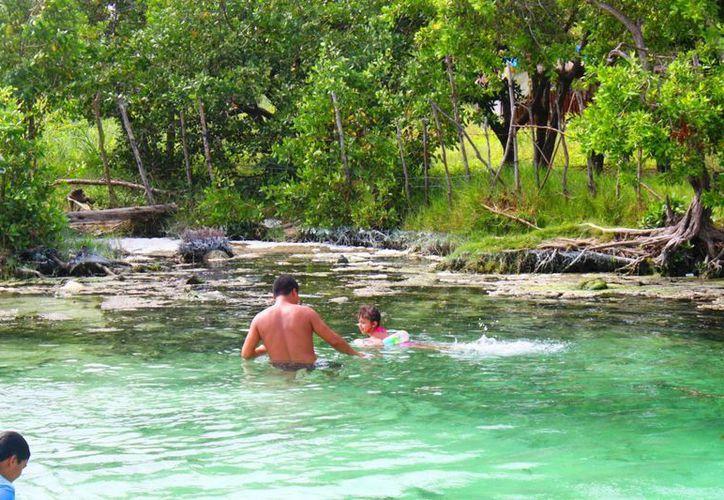 Este año podría integrarse un censo de los cenotes que hay en el municipio de Solidaridad. (Daniel Pacheco/SIPSE)