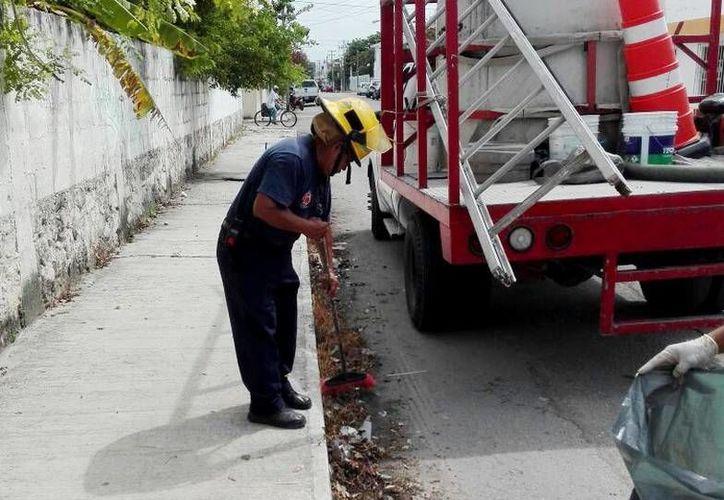 Las brigadas de Protección Civil salieron a limpiar las calles y las alcantarillas de las zonas más vulnerables de Cozumel. (Redacción/SIPSE)