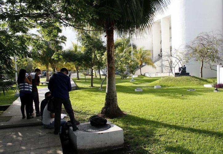 Las escuelas antiguas son las que cuentan con programas de educación ambiental. (Francisco Gálvez/SIPSE)