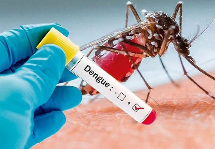 Los grupos de edad más afectados por el dengue son los niños de 5 a 14 años. (Archivo/Sipse)