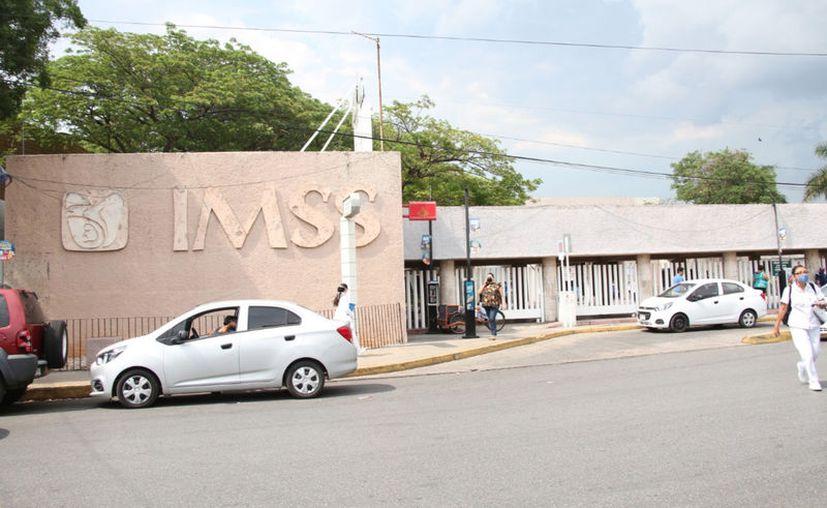 El Seguro Social atiende más de ocho mil partos al año. (Novedades Yucatán)