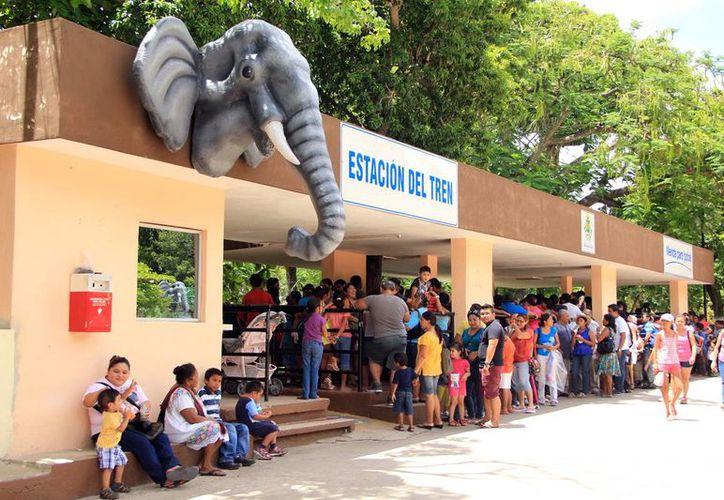 El Centenario abrirá en horario de 6:00 a 15:00 horas, los dos próximos sábados. Imagen de la fila para subirse al trenecito. (Milenio Novedades)