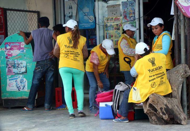 Imagen de las brigadas de personal de Salud, quienes realizas tareas preventivas en contra del mosquito transmisor del dengue, chikungunya y zika. (Milenio Novedades)