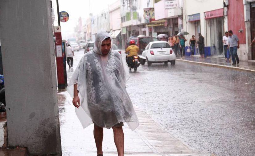 Las lluvias podrían hacerse presentes otra vez en la Península. (Milenio Novedades)