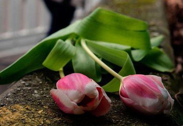 Las autoridades francesas concluyeron la búsqueda de restos humanos de las víctimas del avionazo de Germanwings. La imagen es de ofrendas florales para los desaparecidos, y está utilizada sólo como contexto. (NTX/Archivo)
