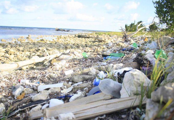 La población general al día dos toneladas de basura. (Harold Alcocer/SIPSE)