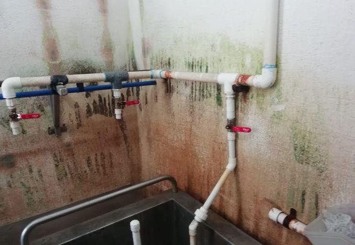 El agua pasaba directamente al consumidor desde un pozo de tres metros de profundidad. (Octavio Martínez/SIPSE)