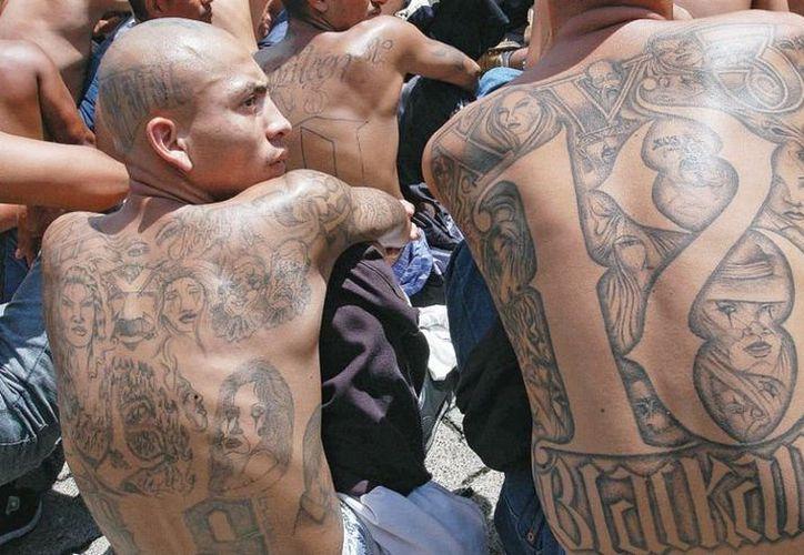Los presuntos integrantes de la pandilla, fueron capturados en Estados Unidos y El Salvador. (Foto: Contexto/Internet)