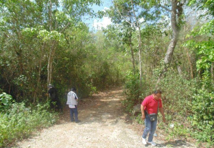 El sujeto fue encontrado sobre la carretera Cafetal-Mahahual, cerca del tramo federal. (Redacción/SIPSE)