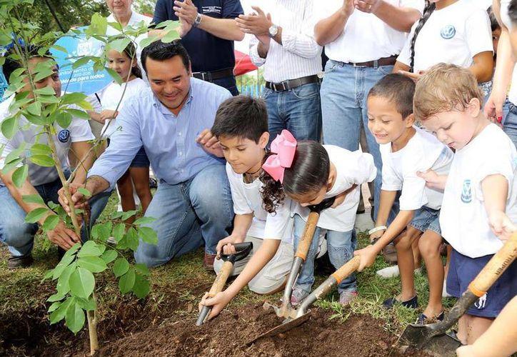 """Vecinos de Francisco de Montejo se unieron al programa """"Adopta un árbol"""" del Ayuntamiento de Mérida."""