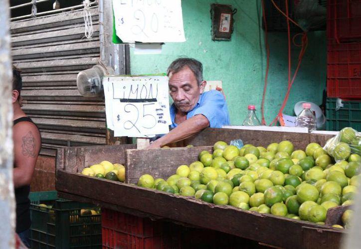 Fuentes de la Central de Abastos de Mérida dijeron que el alza del precio del limón se mantendría al menos un mes más, pero de acuerdo a la Sagarpa el alza podría continuar hasta junio. (Jorge Acosta/Milenio Novedades)