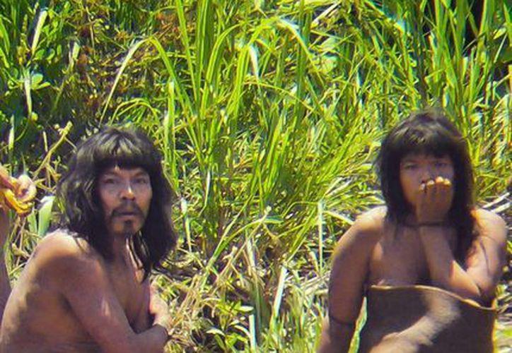 Miembros de la tribu mashco-piro, fotografiados en noviembre de 2011 en un lugar no identificado del Parque Nacional del Manu en el sureste de Perú. (Agencias)