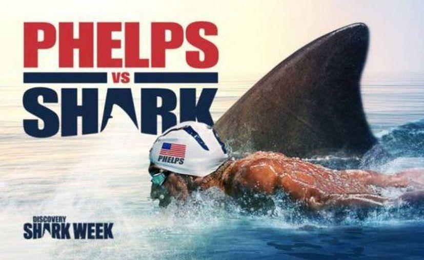 La carrera entre el campeón olímpico en natación y el tiburón, se grabó cerca de las costas de Ciudad del Cabo. (Foto: Twitter)