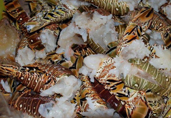 Debido al clima los mariscos en Bacalar han comenzado a escasear para su venta. (Javier Ortiz/SIPSE)