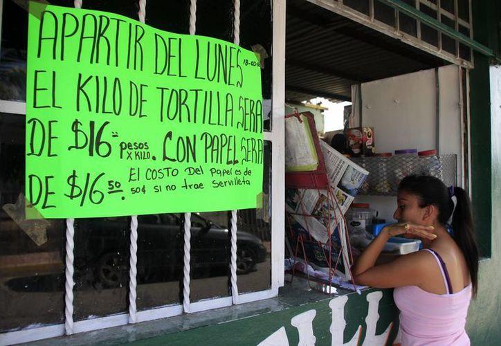 Desde el pasado lunes, el kilogramo de tortilla se vende en 16 pesos. (Enrique Mena/SIPSE)