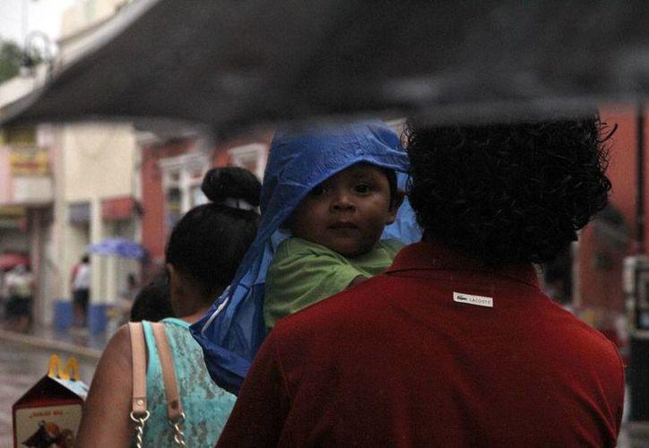 La lluvia comenzó a caer, en algunas zonas de Mérida, desde media mañana; por la tarde, la lluvia se intensificó y generó encharcamientos en calles del Centro de la Ciudad a donde corresponde la imagen de este pequeño, bien protegido por impermeable y paraguas. (José Acosta/SIPSE)