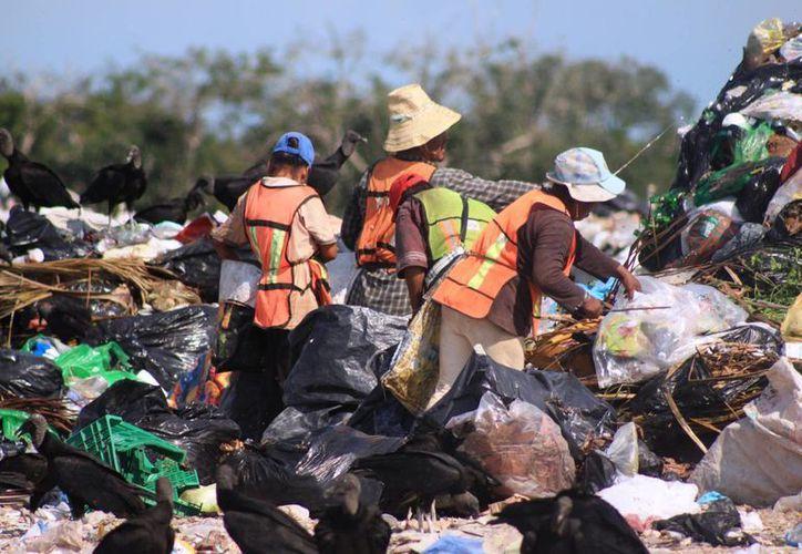 Los pepenadores tienen una ganancia de un peso con 50 centavos por cada kilogramo de plástico recolectado. (Juan Palma/SIPSE)