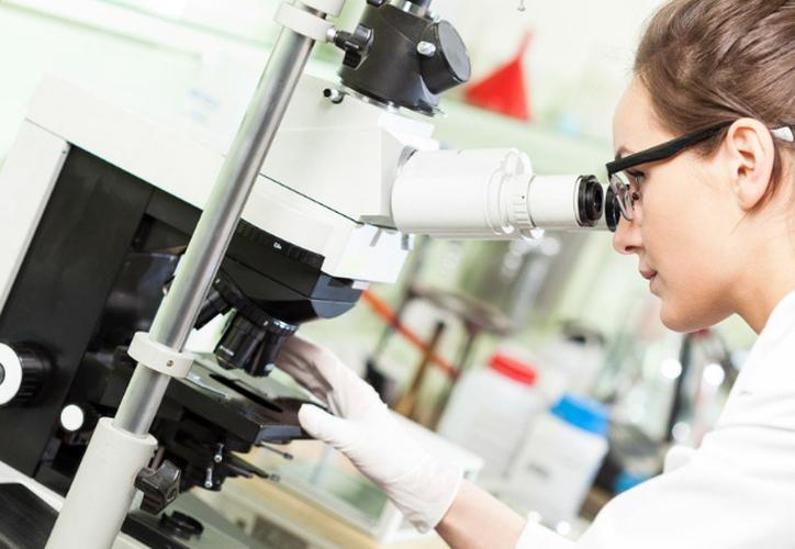 La USAL descubre nueva alternativa de la quimioterapia
