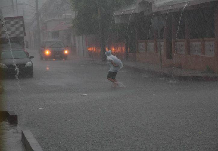 En la isla se registraron 110 milímetros de precipitación pluvial. (Julián Miranda/SIPSE)