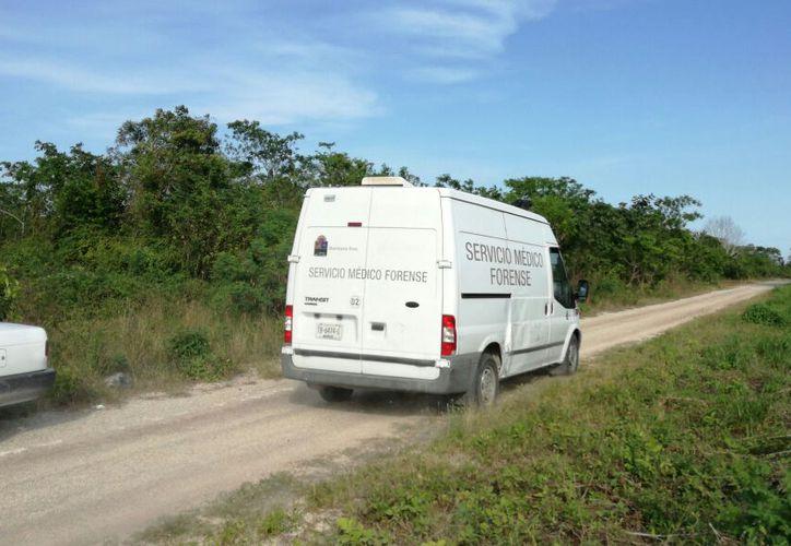 Elementos de seguridad solicitaron el apoyo de integrantes del Servicio Médico Forense (Semefo), para que levantaran el cadáver. (SIPSE)