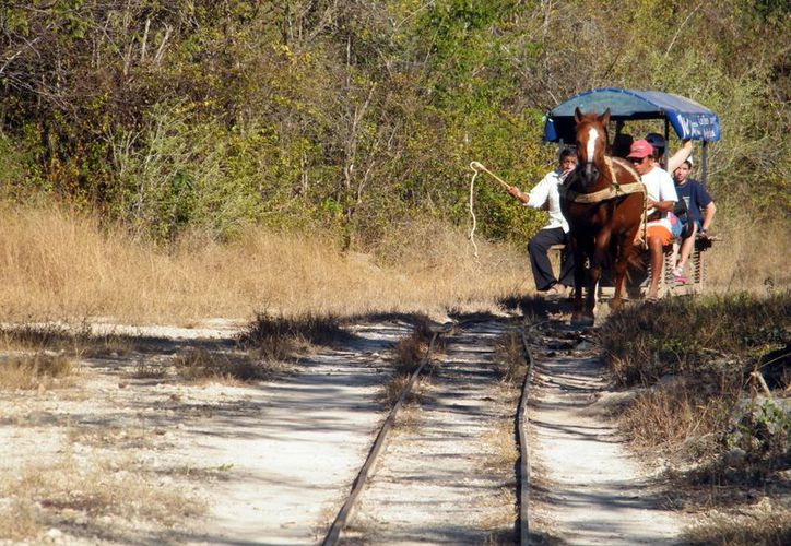 El recorrido por los cenotes consta de nueve kilómetros. (Milenio Novedades)