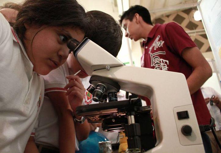 A la Expo Ciencia Yucatán 2016 participaron miles de estudiantes ya sea como participantes o visitantes. Imagen de una niña mientras mira en un microscopio. (José Acosta/Milenio Novedades)